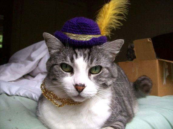A Selection Of Funny Hats On Even Cuter Cats
