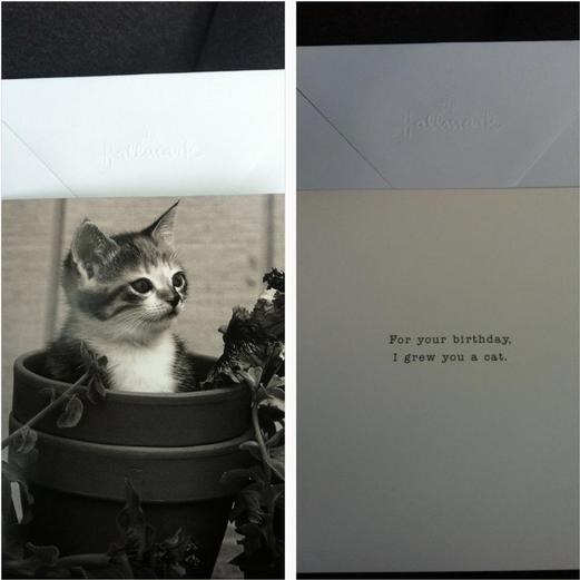 19 Funny Birthday Cards