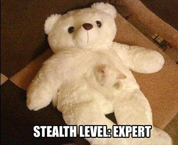 Stealth Level..
