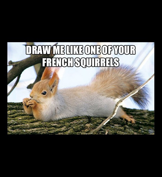 French Squirrel
