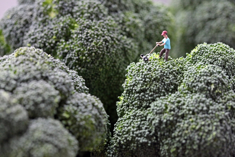 Tiny People In A World Of Humongous Foods!