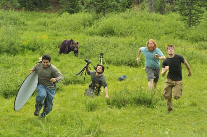 Lets Refresh Our Photographer Appreciation! amazing, animals, crazy, hilarious, lol, people, photos, stupid, world, wow, wtf