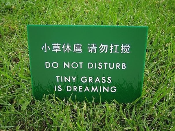 Do Not Disturb china, chinese, chinese-signs, chinese-translations, engrish, fail, fails, funny, funny-signs, funny-translations, humor, humour, translation, translation-fail, translation-fails, translations