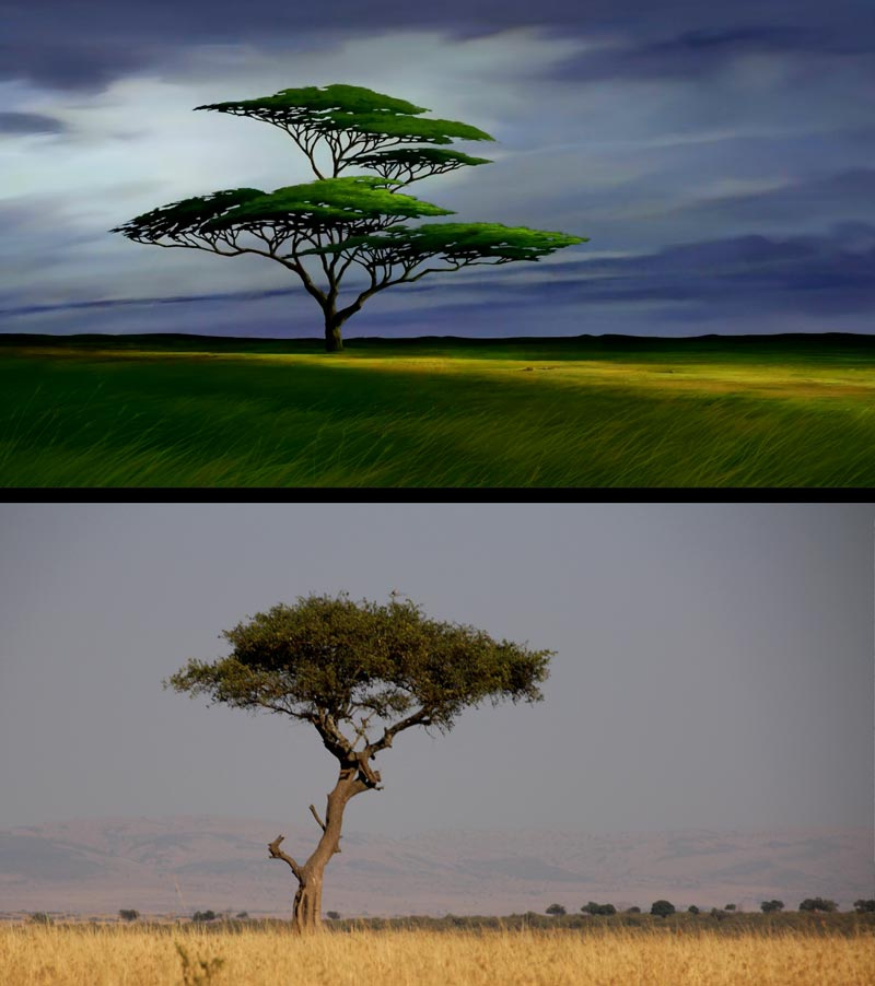 """The Lion King"" in Real Life"