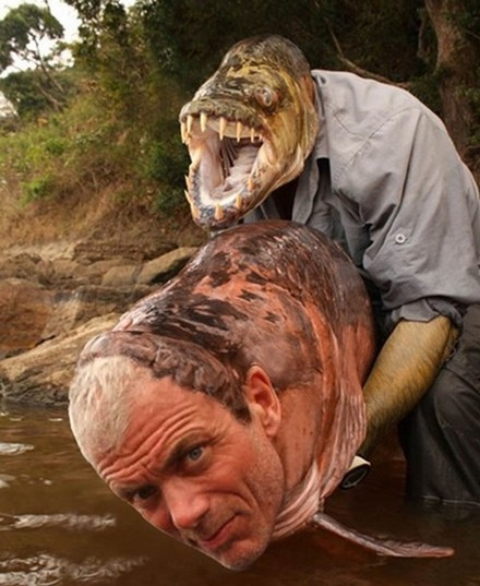 15 Disturbing Animal Face Swaps!