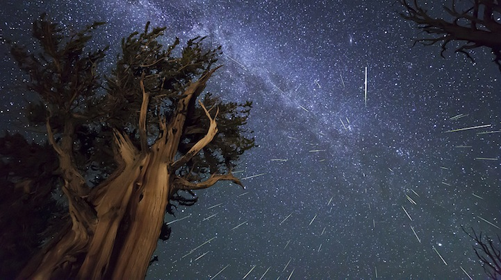 Spectacular Shots of This Year's Perseid Meteor Shower