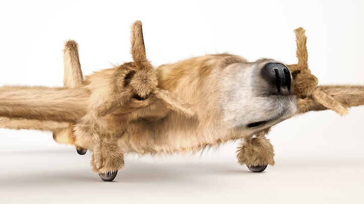 """Dogfighters"" Morph WWII Planes with Furry Animals"