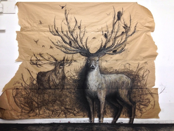 Incredible Life-Sized Drawings of Animals that Look 3D 3d, animals, drawings