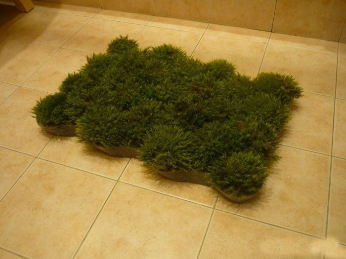 Homemade Grass Bath Mat grass, handmade, maty