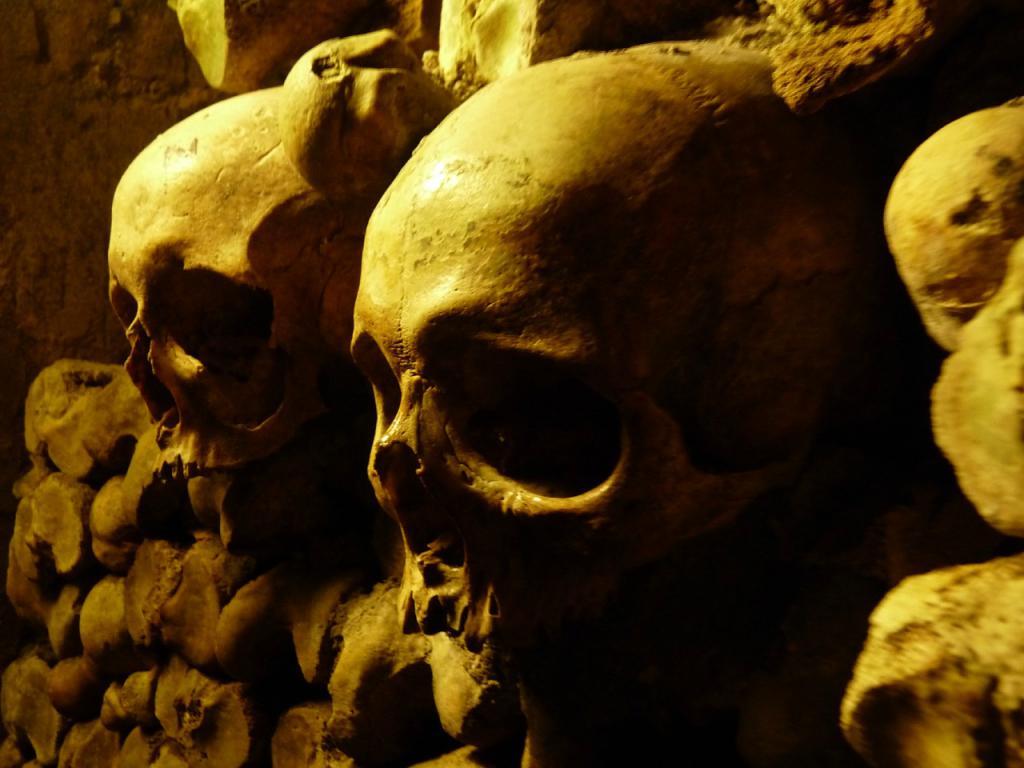 Обои черепа, Катакомбы, кости. Разное foto 14