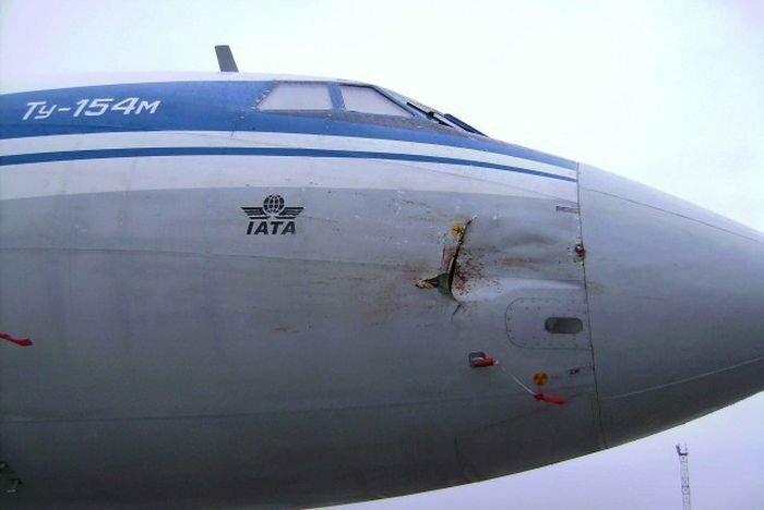 12. Ту-154м VS гусь