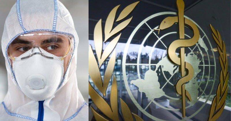 Подвели весь мир: как ВОЗ провалила борьбу с коронавирусом (5 фото)