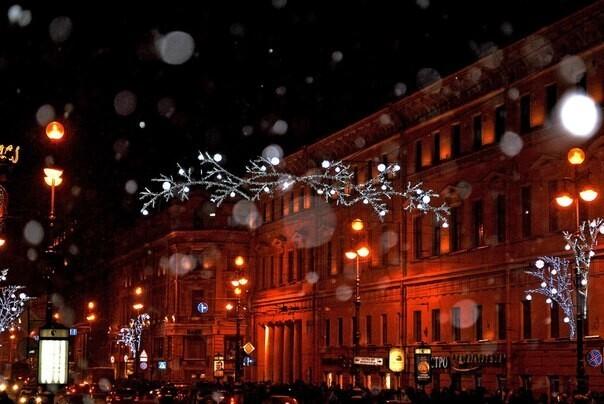 Петербуржцы поддержали петицию в защиту малого бизнеса после введения «коронавирусных ограничений»